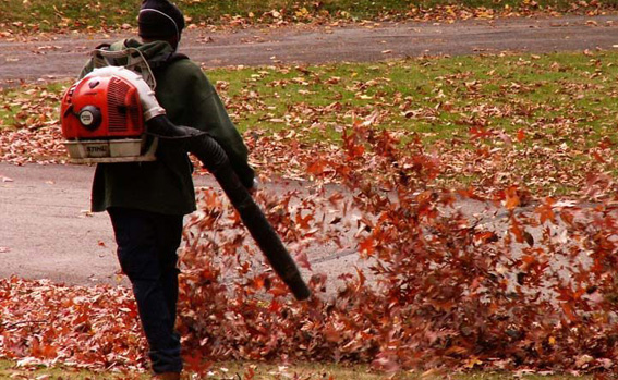 fall $ spring cleanups