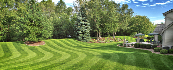 landscaping maintenance Weston MA