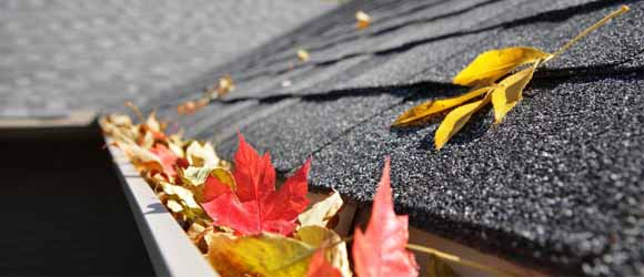 Gutter Cleaning Service And Gutter Repair Ma